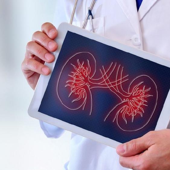¿En tu Laboratorio ya están reportando RAC desde la Sección de Uroanálisis?