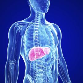 ¿Conoces la Técnica TMA (Amplificación Mediada por Transcripción en Tiempo Real) para la Detección y Seguimiento de Pacientes con HBV y/o HCV?